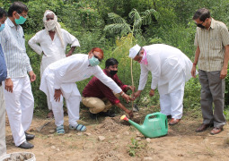 Herbal Garden of Ayurveda Faculty of Glocal University expanded